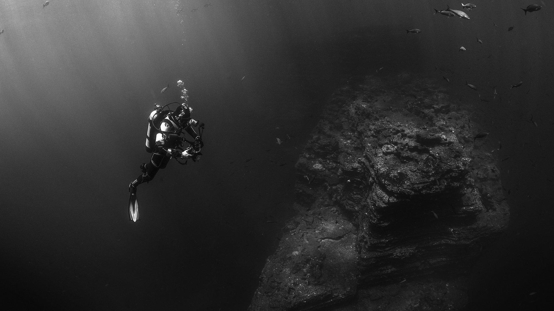 """Portugezen doen """"belangrijkste onderwatervondst ooit"""": 400 jaar oud scheepswrak bij Cascais"""