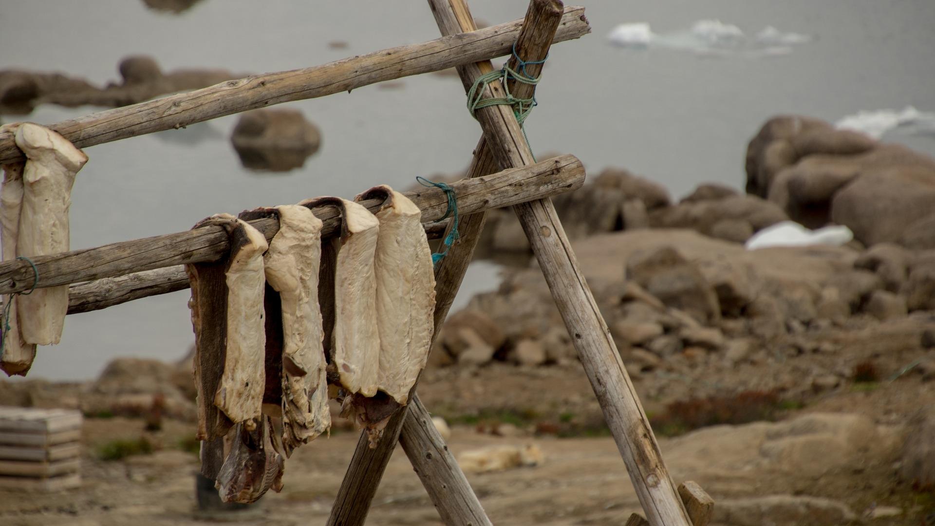 Dit aten de bemanningsleden aan boord van een VOC-schip