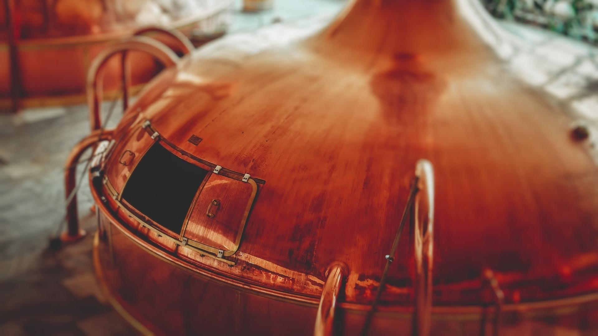 Dagprogramma Kazerne Dossin en brouwerij Het Anker